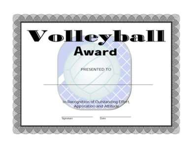 Volleyball Award Certificate -One